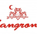 Buen Fin Sanborns 2013