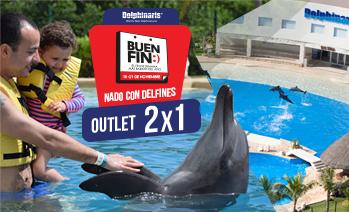 buen-fin-nadar-con-delfines-en-cancun