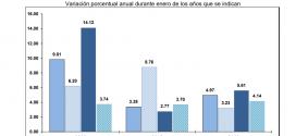 INPP 2019 – Enero -0.53%
